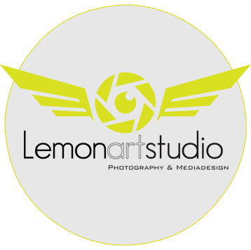 lemonartstudio.it